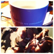 3/5: Weakness - Coffee & Chocolate